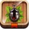Thumbnail image for App Review and Giveaway: Meet the Insects – Forest Edition