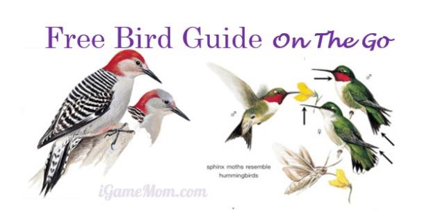 FREE App: Peterson Backyard Birds of North America