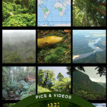Rainforests - App by Britannica Kids