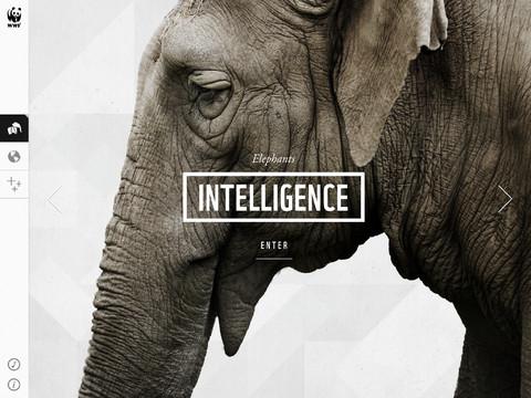 WWF Together Free App