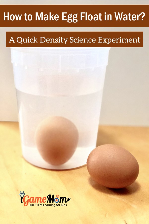 Egg float in the salt water. Experimenting density and buoyancy