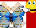 Google_Small__Butterfly_Headline
