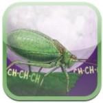 Noisy-Bug-app-cover