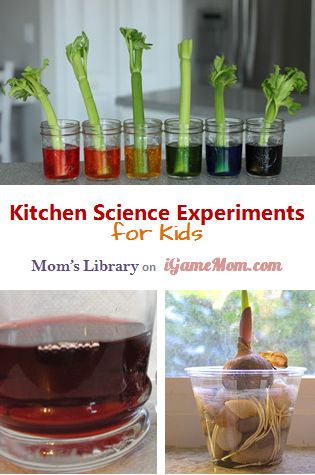 6 Kitchen science experiments using simple materials with easy set ups, good for kids of all ages. Fun STEM activities for kids at home