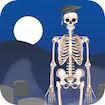 D Bones