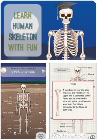 Learn Human Skeleton with Fun