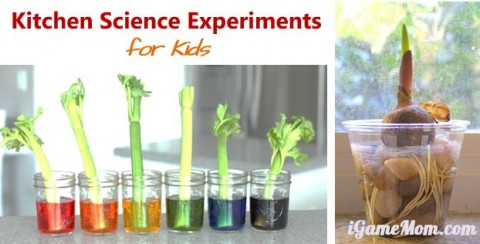 easy kitchen science experiments for kids