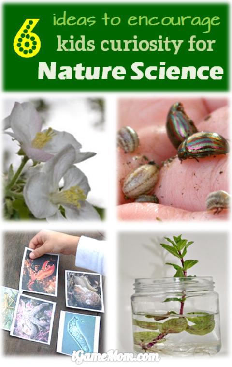 encourage kids curiosity nature science
