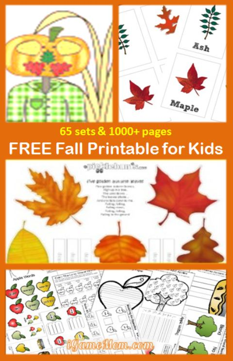 65 sets Free Fall Printables for Kids, with many learning subjects: fine motor, color, number, letter, spelling, science, ... Fun seasonal activities for kids of all ages
