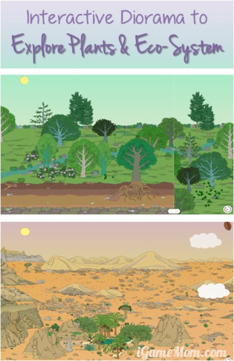 Interactive Diorama to Explore Plants Eco System