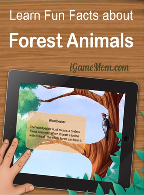 Learn Fun Facts of Forest Animals - A Kids Animal Science App