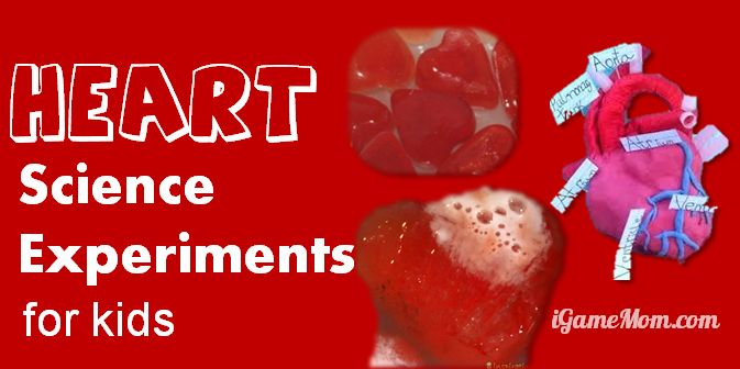 Simple Science Experiments With Heart Themes Igamemom