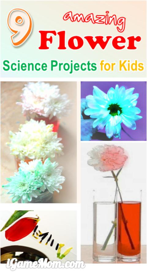 Amazing flower science projects for kids, colors, water absorption, lights, … fun STEM activities for spring and summer | easy science experiments | backyard activities | kitchen science | science fair project