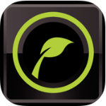 Free App: Tree Leaf Identification with LeafSnap post image