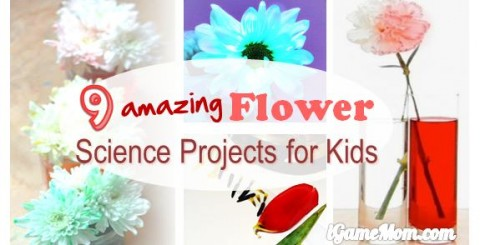 amazing flower science for kids