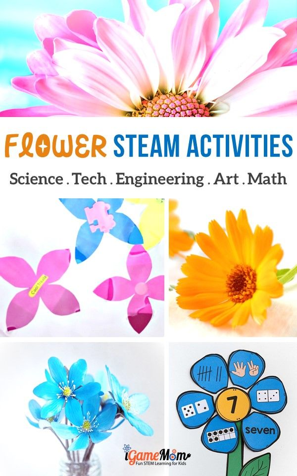 Flower STEAM activities for kids: art and craft projects, science experiments, math activities, engineering creations, YouTube videos about flowers. Great learning activity ideas for kids from preschool to school age