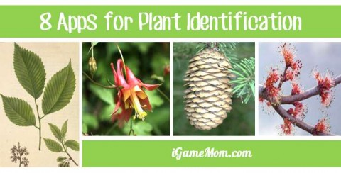apps for plant identification