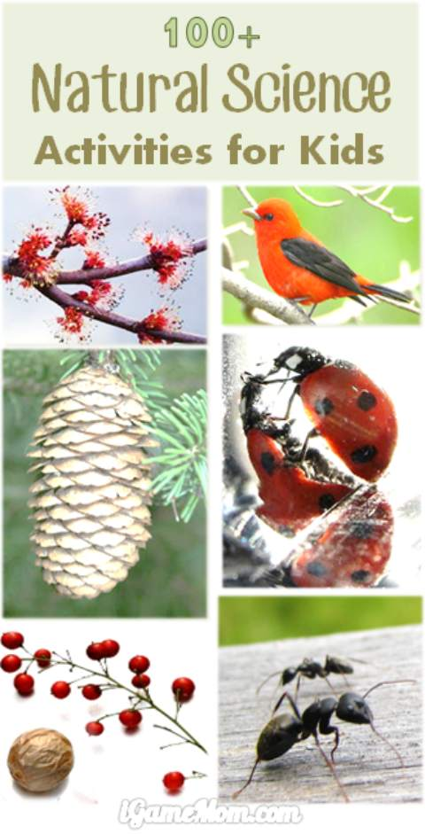 100 natural science activities for kids from preschool to high school: water, ice, weather, seed, flower, pine cone, … | STEM | simple science experiments | backyard | kitchen | outdoor