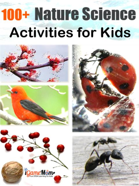 More than 100 nature science activities for kids from preschool to high school: water, ice, weather, seed, flower, pine cone, … wonderful STEM resource to keep kids busy all year long. All are simple outdoor and indoor science experiments, for science study in the classroom, or at home in the backyard, in the garden, or in the kitchen, great for sparking children's scientific curiosity and fostering the love of nature.