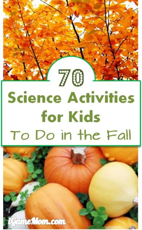 More Than 70 Autumn Science Activities For Kids To Do This