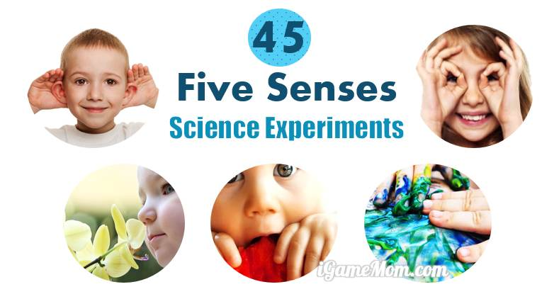 45 science activities for kids to learn the 5 senses. Black Bedroom Furniture Sets. Home Design Ideas