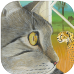 Learn about the Wild Big Cats from Your Pet post image