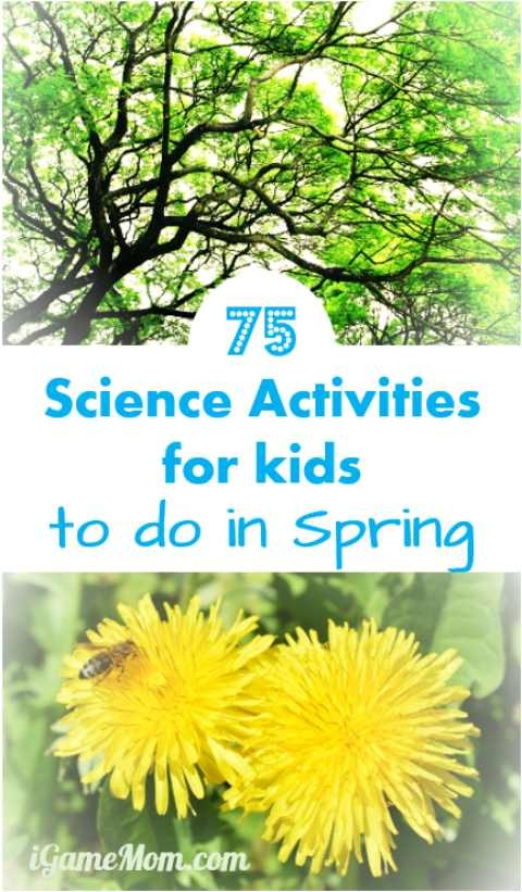 Spring science activities fun for kids