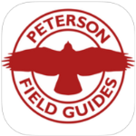 FREE App: Peterson Backyard Birds of North America post image
