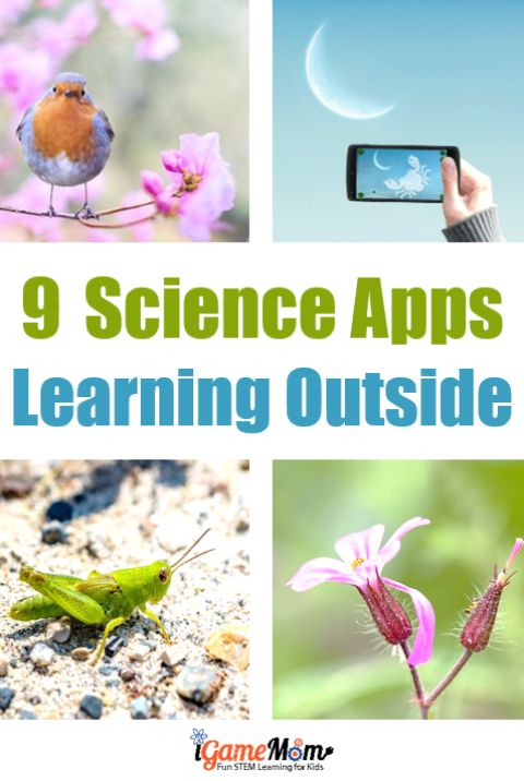 9 apps offering interactive learning experience and making outdoor science study fun - birds, stars, plants, flowers, bugs, ... Fun STEM resources for your outdoor education lab and curriculum for learning outside. homeschool
