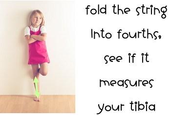 measure tibia
