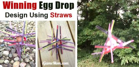 Egg drop project science design experiment with straw
