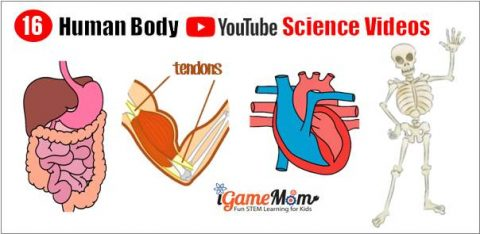 YouTube science videos teach kids human body