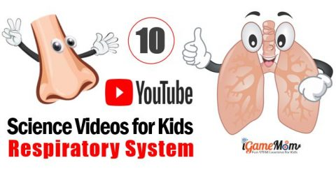 YouTube Human Body Respiratory System Science Videos for Kids