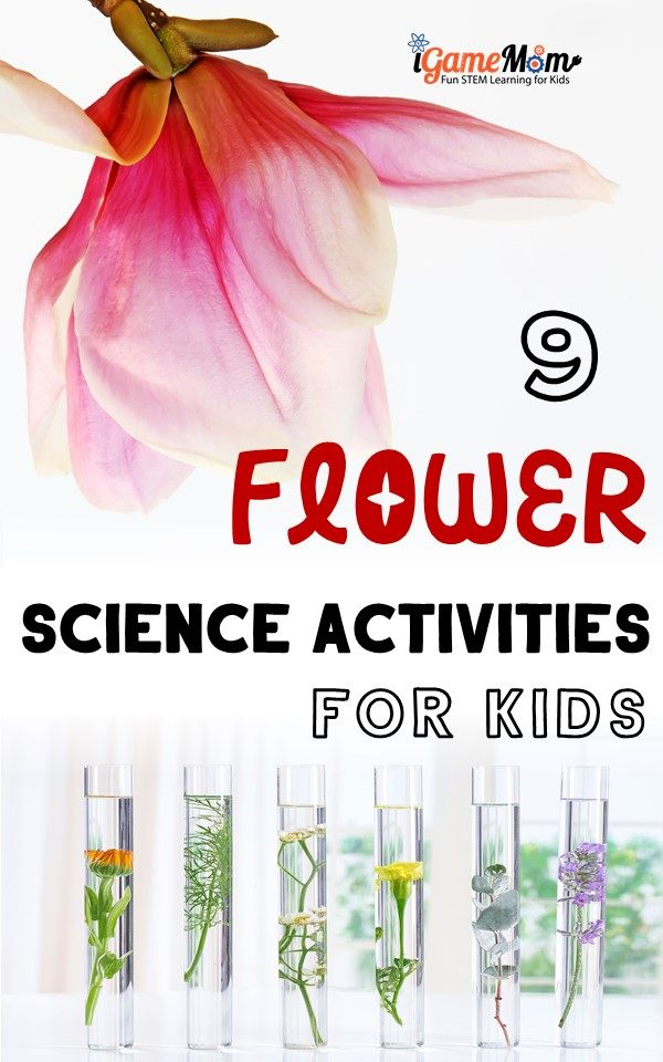 Flower science projects for kids to learn plant life cycle, colors, water absorption, lights, fun STEM activities for Valentine Day, Mother's Day, spring and summer science experiments at home backyard or kitchen, school class project and science fair project