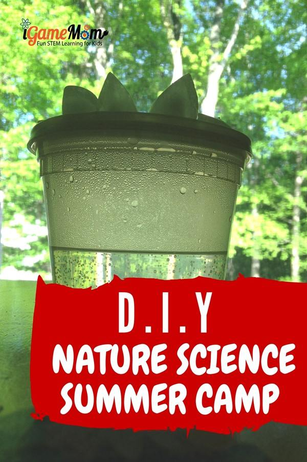 DIY nature science summer camp at home. 5 themes for 5 days or 5 weeks. 8-10 activity ideas for each theme for all ages. STEM activity for school and home.