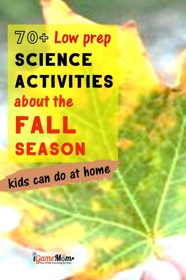 Fall science activities for kids to do at home. Seasonal science experiments using pumpkins, leaves, apples, pine cones, sun, moon, stars, wind, rain. Free STEM resource for classroom, homeschool or after school enrichment.