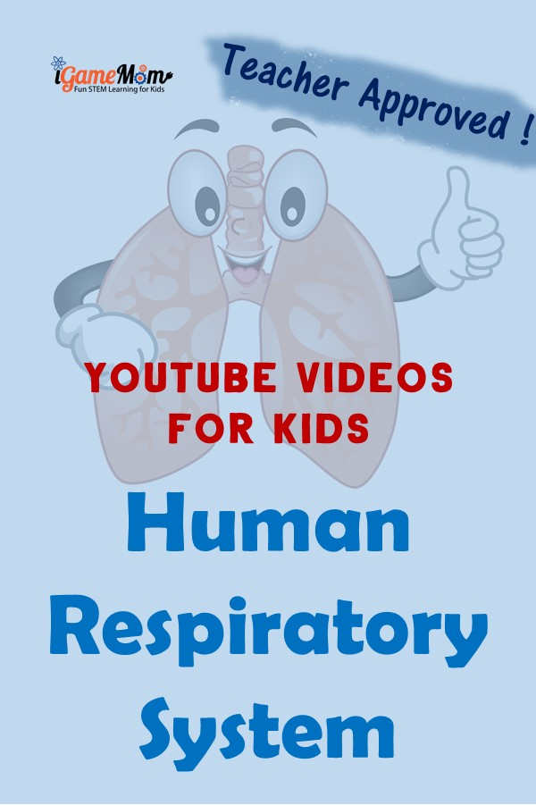 Teacher approved science videos on YouTube teaching students Respiratory System: nose, larynx, trachea, bronchi, and lung; for kids from preschool to high school. Perfect for science class and homeschool, human body unit, physiology.