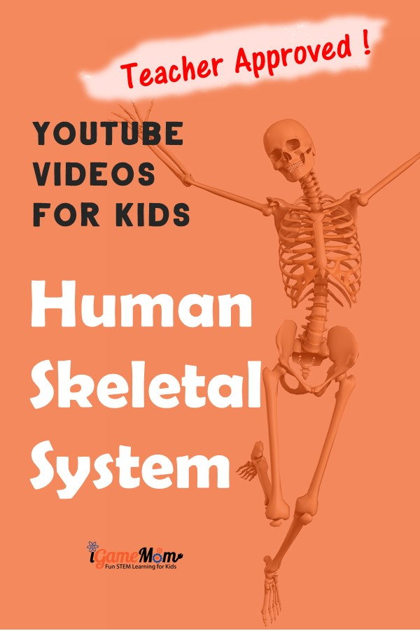 Teacher approved YouTube science videos teaching human body skeleton system to kids from preschool kindergarten to school age. Great supplements for human body unit, physiology and biology science class or homeschool